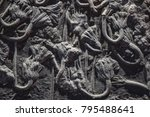 crinoid  sea lily  fossil | Shutterstock . vector #795488641