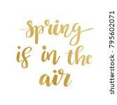 hand lettered inspirational... | Shutterstock .eps vector #795602071