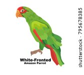 white fronted amazon parrots.... | Shutterstock .eps vector #795678385