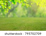 nature spring grass background... | Shutterstock . vector #795702709