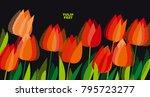 abstract modern vivid floral... | Shutterstock .eps vector #795723277