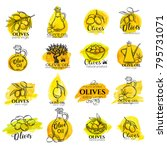 hand drawn watercolor labels... | Shutterstock .eps vector #795731071