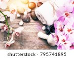 spa setting with pink orchid ... | Shutterstock . vector #795741895