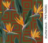 bird of paradise tropical... | Shutterstock .eps vector #795760081