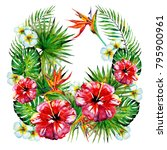 beautiful red flowers  palm...   Shutterstock . vector #795900961