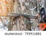 manual chainsaw. man hands ... | Shutterstock . vector #795911881