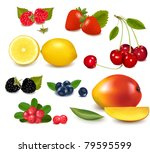 group of cranberries ... | Shutterstock .eps vector #79595599