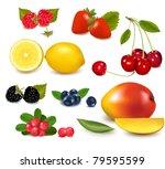 group of cranberries ... | Shutterstock .eps vector #79595599
