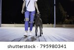 Stock photo unrecognizable young woman wearing jeans and a t shirt is walking with her big black dog in a park 795980341