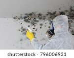 Small photo of A Man removing Mold fungus with respirator mask