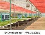 iot smart industry robot 4.0... | Shutterstock . vector #796033381
