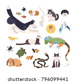 collection of pets isolated on... | Shutterstock .eps vector #796099441