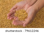 hand holding rice | Shutterstock . vector #79612246
