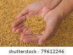 hand holding rice | Shutterstock . vector #79612246