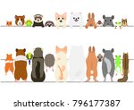 Stock vector standing pet animals front and back border set 796177387