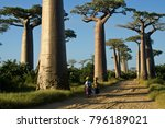 morondava  madagascar  april 13 ... | Shutterstock . vector #796189021