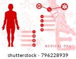 2d illustration human male... | Shutterstock . vector #796228939