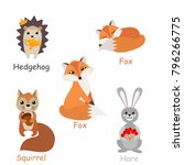 set of isolated forest animals. ... | Shutterstock .eps vector #796266775