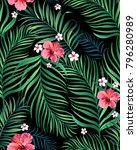 seamless hand drawn exotic... | Shutterstock .eps vector #796280989
