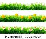 spring flowers and green grass... | Shutterstock . vector #796354927