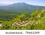 Nice landscape in crimean mountains - stock photo