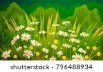 illustration of dandelions and... | Shutterstock .eps vector #796488934