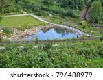 view the patriarch's pond park... | Shutterstock . vector #796488979