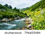 the mountain river. a fast...   Shutterstock . vector #796605484