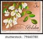 poland   circa 1972  a stamp... | Shutterstock . vector #79660780