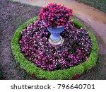 a beautiful landscaped garden... | Shutterstock . vector #796640701