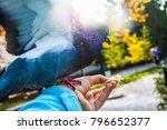 pigeons. a girl is feeding...   Shutterstock . vector #796652377