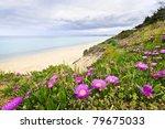 Coast Of Aegean Sea With...