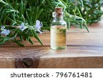 a bottle of rosemary essential...   Shutterstock . vector #796761481