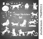 funny dogs sketches. hand... | Shutterstock . vector #796890211