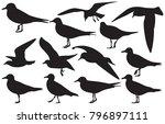 set of sea gull silhouette ... | Shutterstock .eps vector #796897111