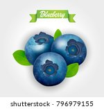 blueberry. sweet fruit. forest... | Shutterstock .eps vector #796979155