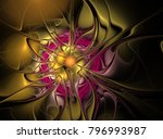 beautiful fractal floral art.... | Shutterstock . vector #796993987