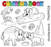 coloring book with woodland... | Shutterstock .eps vector #79699528