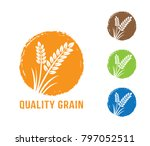 circle shape vector design... | Shutterstock .eps vector #797052511