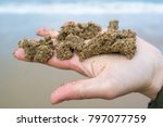 woman hand holding sea stone on ... | Shutterstock . vector #797077759