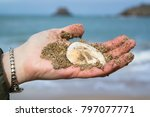 woman hand holding sea stone on ... | Shutterstock . vector #797077771