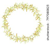watercolor birch tree branch... | Shutterstock . vector #797080825