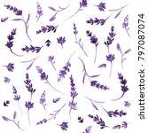 watercolor lavender pattern | Shutterstock . vector #797087074