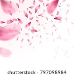 Stock vector pink sakura falling petals background vector illustration eps 797098984