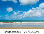 cape tribulation in tropical... | Shutterstock . vector #797100691