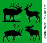 collection forest animals