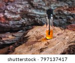 expensive oil agarwood tree.... | Shutterstock . vector #797137417