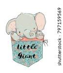 little pocket elephant | Shutterstock .eps vector #797159569