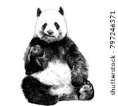 panda sitting smiling figure in ... | Shutterstock .eps vector #797246371