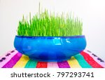 symbols of the persian new year ... | Shutterstock . vector #797293741